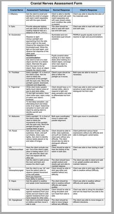 Best Places To Find Nursing School Scholarships – Nursing Degree Info Nursing Assessment, Letter Assessment, Newborn Assessment, Reading Assessment, Summative Assessment, Neurological Assessment, Np School, School Info, Middle School