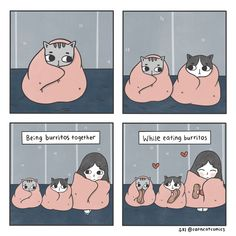 A Girl And Her Two Cats Are The Subject Of These Adorable Comics - World's largest collection of cat memes and other animals Comic 8, Cat Comics, Cat Sleeping, Cat Costumes, Burritos, Cat Memes, Cat Lovers, Retro, Frames