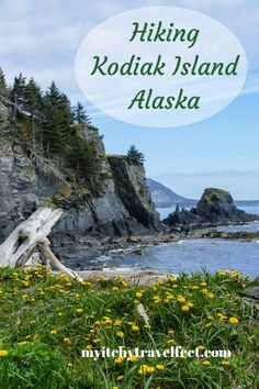On an Alaska cruise to Kodiak Island book a hiking excursion at Fort Abercrombie State Historical Park. You'll be blown away by the natural beauty combined with WWII history. Cruise Excursions, Cruise Travel, Travel Usa, Cruise Tips, Family Adventure, Adventure Travel, Adventure Awaits, Kodiak Alaska, Kodiak Island