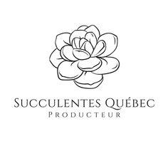 À tous les passionnés de succulentes qui demeurent au Canada. Shops, Canada, Plant, Tents, Retail, Plants, Retail Stores, Replant, Trees