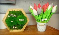 Panel SkotiWood w formie obrazu z mchu poduszkowego i płaskiego w dębowej ramie. Herbs, Herb, Medicinal Plants