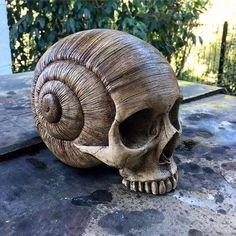 Dark Art - Snail Skull