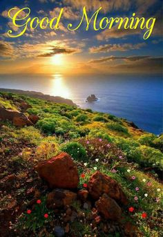 Good morning greeting from Canary Island