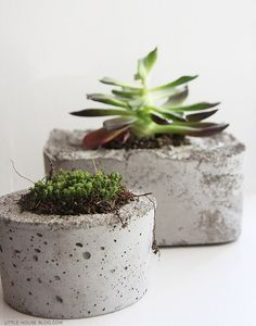diy concrete planters — Lindsay Stephenson - I remember making these as a kid with milk cartons. It's fun to see them again.