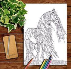Image Result For Swirly Horses Coloring