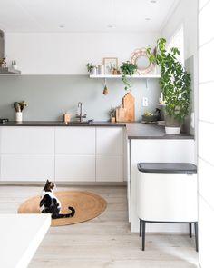 Green and white Ikea kitchen with concrete slab from . - Green and white Ikea kitchen with concrete slab from … # concrete - Kitchen Soffit, Green Kitchen Cabinets, Kitchen Colors, Kitchen Decor, Concrete Kitchen, Concrete Slab, Kitchen Plants, Kitchen Slab, Kitchen Walls