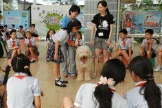 Animals Asia's Professor Paws Program Teaches Children in Guangzhou, China Compassion for Dogs
