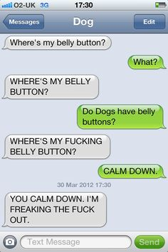 text from dog belly button