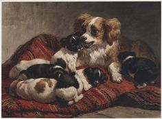 Dog with Puppies (Henriette Ronner-Knip - ) Lawrence Alma Tadema, Amber Tree, Dog Artist, Papillon Dog, Van Gogh Museum, Dutch Artists, Dog Paintings, Mans Best Friend, Art Images