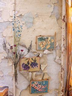 gallery-bloom17 | lidewij edelkoort