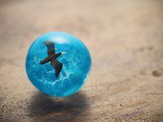 カツオドリのトンボ玉「洋上の風】                                                                                                                                                                                 もっと見る