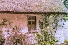 Within the grounds of Bunratty Castle in Co. Old Farm Houses, Acre, Gazebo, Castle, Farmhouse, Outdoor Structures, Cabin, Stock Photos, House Styles