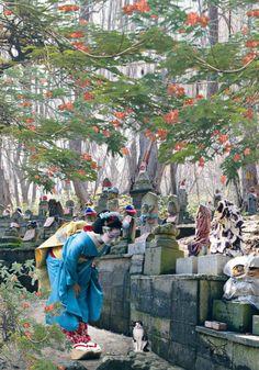 Japón me enamora Kyoto #sakura #japon #kyoto #geisha #primavera #torii #Santuario #sakura #takenaka Japanese Pics, Vintage Japanese, Japanese Art, Asia Travel, Japan Travel, Japan Spring, Gardens Of The World, Parks, Japanese Temple