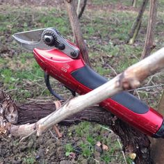 Felco 800 in vineyard