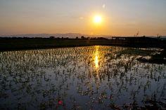 Tot i que ha acabat l'estiu, són molts els atractius que ens mostra el nostre entorn. www.miamicanpons.com