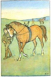 Horse copywork