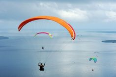 Photos of the day - March 17 2017Paragliders fly during the...  Photos of the day - March 17 2017  Paragliders fly during the Paragliding Accuracy World Cup 1st Series 2017 at Mount Tumpa in Manado Indonesia; Relatives react near the bodies of civilians killed in air strike during a battle between Iraqi forces and Islamic State militants in Mosul Iraq; Taronga Zoos yet-unnamed Pygmy Hippo calf born on February 21 swims underwater as she goes on public display for the first time in Sydney…