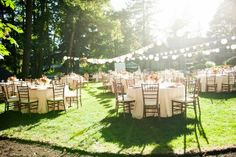 backyard wedding reception.