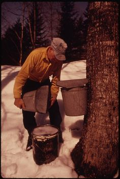 This Dairy Farmer near Randolph Center, Vermont, 04/1974.