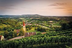 Überblick auf die Region Bad Gleichenberg #badgleichenberg #regionbadgleichenberg Austria, Vineyard, Places To Visit, Outdoor, Tuscany, Holiday Destinations, Graz, Pet Dogs, Outdoors