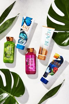 Give your skin a drink of the best beach moisturizers — whether you want the power of Shea Butter in our Body Cream or a Body Lotion that's lightweight & lasts a (Shea Butter Photography) Body Shower, Shower Gel, Body Butter, Shea Butter, Bath And Shower Products, Vanilla Perfume, Bath And Bodyworks, Best Perfume, Cosmetic Packaging