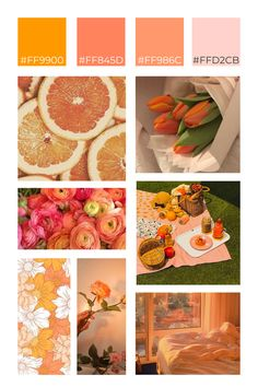 Fresh and bright are the words we'd use to describe orange flowers. This orange flower moodboard pulls out the best of these feelings--a picnic on a warm summer day, the sun setting just right, and the freshness of a summer day. #flowers #orangefloweraesthetic #orangeflowers #sunset #picnicaesthetic Orange Flowers, Fresh Flowers, Flower Aesthetic, Picnic, Bright, Warm, Table Decorations, Sunset, Feelings