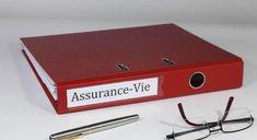 Assurance vie : faut-il ouvrir plusieurs contrats ?   Le Revenu Assurance Vie, Marshall Speaker, Stock Market Index