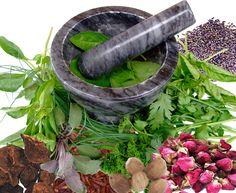 Magickal Herbs, Roots, & Flowers www.planetvoodoo....