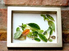 Beautiful altered leaf shadowbox tutorial from Hello Hydrangea: Inspired by Anne Ten Donkelaar