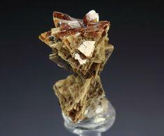 HELVINE (HELVITE), GENTHELVITE / Mineral Friends <3