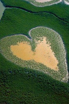 Heart in Voh, New Caledonia - France in the Pacific Ocean