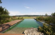 Natural Swimming Pool by Biotop
