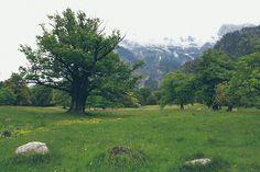 Maienfeld, Switzerland
