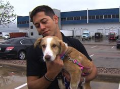 US soldier reunited with puppy he found overseas
