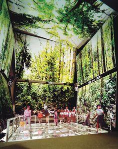 Panama City's Biomuseo: Bridge of Life. Frank Gehry