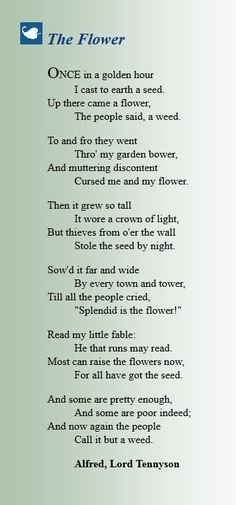 The Flower - Alfred Lord Tennyson