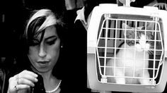 The Cat Ladies: Amy Winehouse & Cat Crazy Cat Lady, Crazy Cats, Beatles, Celebrities With Cats, Celebs, Mean Cat, Image Chat, Cat People, Amy Winehouse