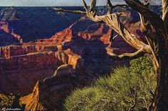 Hermit Rest Grand Canyon National Park Photograph by Nadine and Bob Johnston - Hermit Rest Grand Canyon National Park Fine Art Prints