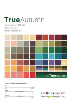 Colors for a True Autumn Man Copyright © 2011 No part of these materials may be reproduced, distributed or transmitted in any form or by any means unless prior written permission is given by Lisa K. Ford- CEO and Founder of Invent Your Image, LLC www.inventyourimage.com
