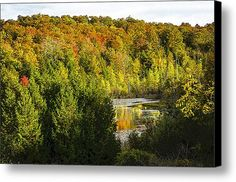 Leelanau Fall 2015 Canvas Print / Canvas Art By Tom Clark  many other examples of nature's beauty can be found in the gallery at:  http://2-tom-clark.pixels.com/collections/natures+artistry  my whole gallery can be viewed here: http://2-tom-clark.pixels.com/index.html?tab=galleries