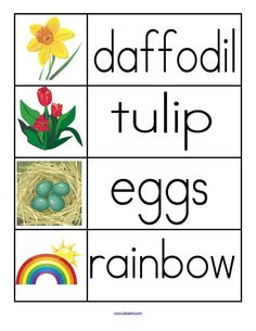 Spring theme word wall. 12 words and pictures.
