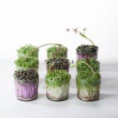 bildergebnis f r bodenvase gro vasen und ikebana pinterest bodenvasen gro und vasen. Black Bedroom Furniture Sets. Home Design Ideas