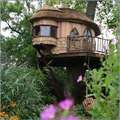 Treehouses For Adults | Tree Houses for Adults!