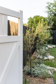 My Backyard Makeover — Adore Home Magazine Side Garden, Garden Edging, Garden Beds, Australian Garden Design, Australian Native Garden, Landscaping Supplies, Front Yard Landscaping, Modern Landscaping, Sidewalk Landscaping