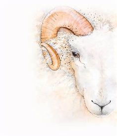 What Are The Attractive Traits of An Aries? Aries Art, Aries Sign, Zodiac Signs Aries, Aries Horoscope, Zodiac Art, Sagittarius, Aries Wallpaper, Aries Ram Tattoo, Aries Tattoos