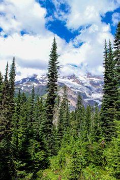 Mount Rainier, the icon of Washington state. Click through to read about visiting this national park in one day: http://mytanfeet.com/pacific-northwest/mount-rainier-tours-northwest/
