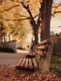 oh, autumn...