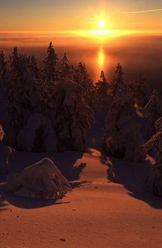 Winter sunset in Kuusamo, Finnish Lapland