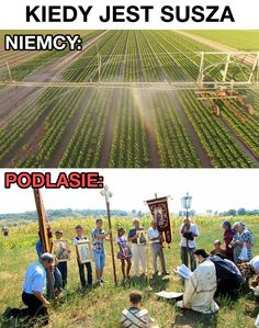 Assuring water for the crops Very Funny Memes, Haha Funny, Best Of 9gag, Polish Memes, Past Tens, Cursed Images, Man Humor, Best Memes, Best Funny Pictures