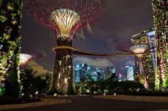 Los titánicos árboles de metal que poblan Singapur (VÍDEO) - http://growlandia.com/marihuana/los-titanicos-arboles-de-metal-que-poblan-singapur-video/